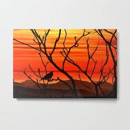 Blackbird's dusk Metal Print