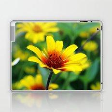 Prairie Flower Laptop & iPad Skin