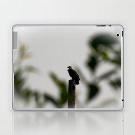 Eagle at Sunrise Laptop & iPad Skin