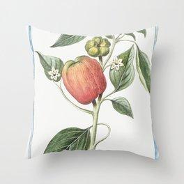 Capsicum fructu subrotundo ventricoso dulci in summitate tetragono Peperoni di Spagna grandi e dolci Throw Pillow