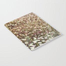 Daisy Fields Notebook