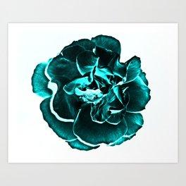 Teal rose Art Print