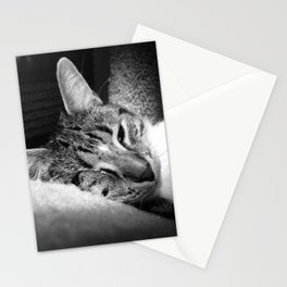 Leela Squint Stationery Cards