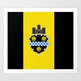 flag of pittsburg Art Print