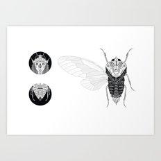 cicada (ii) Art Print