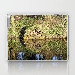 Reflection and circle Laptop & iPad Skin