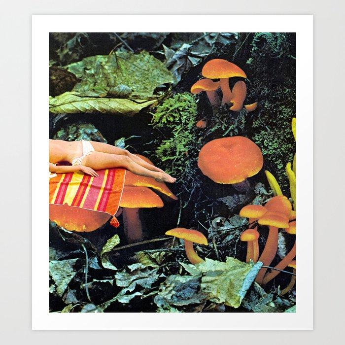 MUSHROOMS by Beth Hoeckel Kunstdrucke