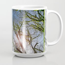 RAIN FOREST MAPLES REACHING FOR THE SKY Coffee Mug