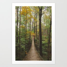 A Walk in the Woods, No. 2 Art Print