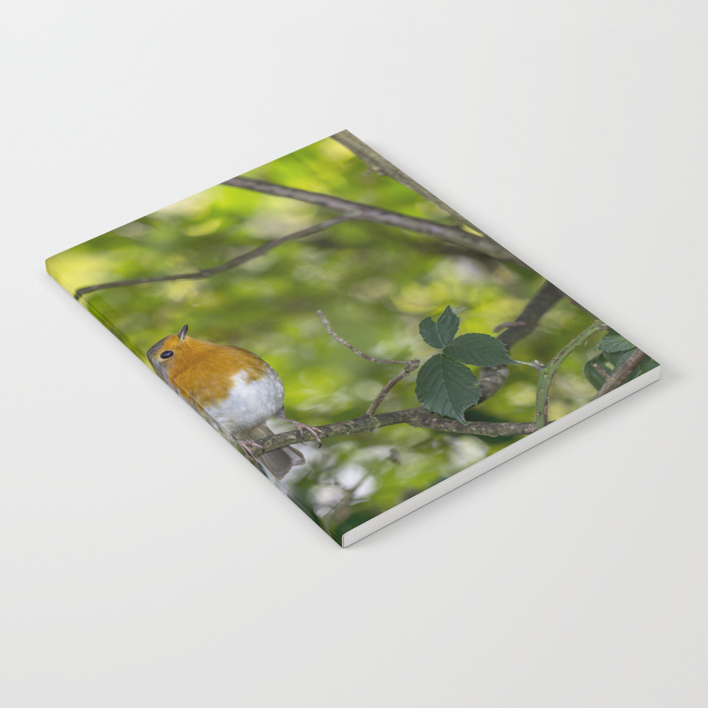 Redbreast. Notebook by Angelaairdphotography (NBK7976473) photo