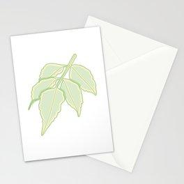 Toothed Margin Leaf Branch Illustration Stationery Cards