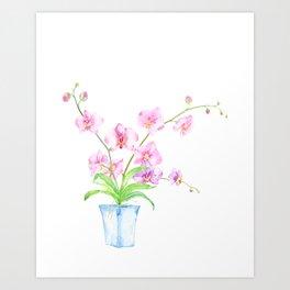 Watercolor Orchid Illustration Art Print