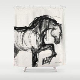 Horse (Saklavi Portrait) Shower Curtain