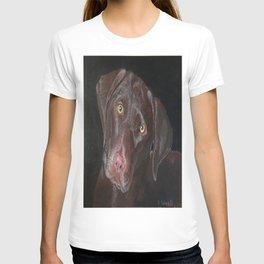 Inquisitive Chocolate Labrador T-shirt