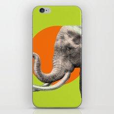 Wild 6 by Eric Fan & Garima Dhawan iPhone & iPod Skin