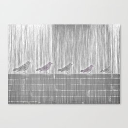 FIVE LITTLE BIRDS Canvas Print