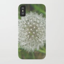 Dandelion Seedhead iPhone Case