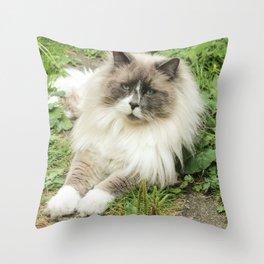 Lord Niles the Ragdoll Throw Pillow
