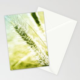Splendor Stationery Cards