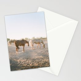 Relaxing at sunset Stationery Cards