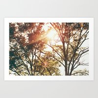 Listen to the trees talking in their sleep Art Print