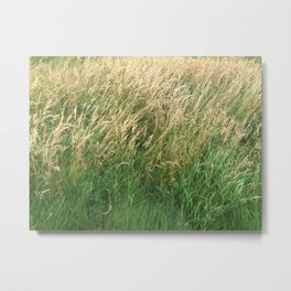 Buried In Grass Metal Print