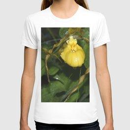 Lady Slippers in Rain T-shirt