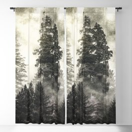 Smoky Redwood Forest Foggy Woods III - Nature Photography Blackout Curtain