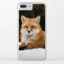 Artic Fox Clear iPhone Case