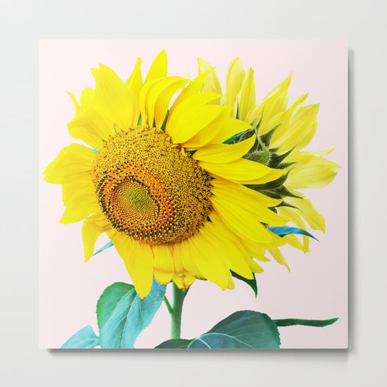 Sun Flowers #society6 #decor #buyart Metal Print
