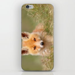 The Cute Kit (Red Fox cub) iPhone Skin