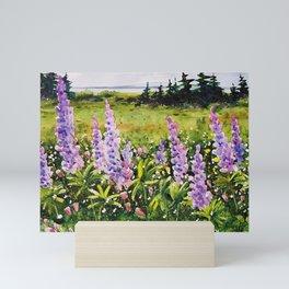 Lupines of Nova Scotia Mini Art Print