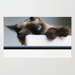 Blue Eyed Cat Rug
