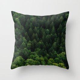 Swiss forest Throw Pillow