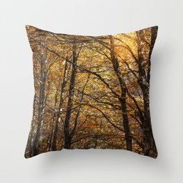 Forest in Autumn time Throw Pillow