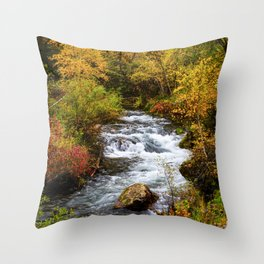 Spearfish Canyon - Creek Surrounded By Fall Color in Black Hills South Dakota Throw Pillow