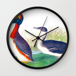 Horned Grebe Duck Wall Clock