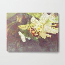Honey Bee: Pearl Metal Print
