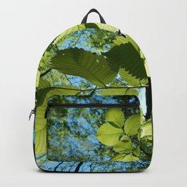 Sunlight Canopy V Backpack