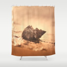 Big Shell on the sea Shower Curtain