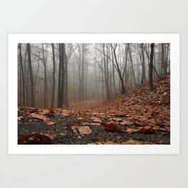 Foggy Trail. Art Print