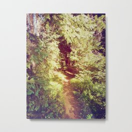 Come to the Secret Place Metal Print