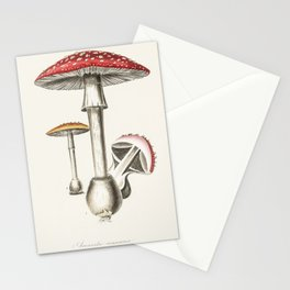 Amanita muscaria Fly agaric red mushroom Stationery Cards