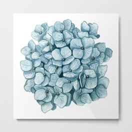 Blue Hydrangea Watercolor Metal Print