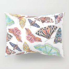Nature Illustration of Moths Pillow Sham