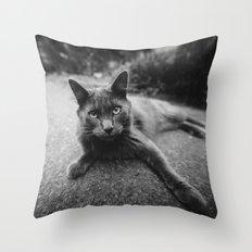 Gray Cat Throw Pillow