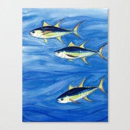 Yellowfin Tuna Canvas Print