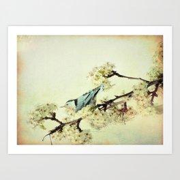 Nuthatch Bird Spring Flower Farmhouse Art Country Home Decor  A131 Art Print