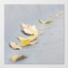 Hojas secas Canvas Print