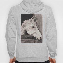 white horse. Hoody